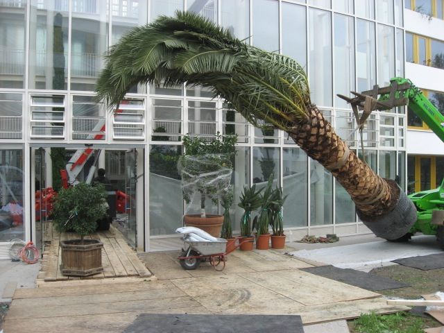 erfahrung ? gartengestaltung elmar knippschild, berlin ... - Gartenarchitektur